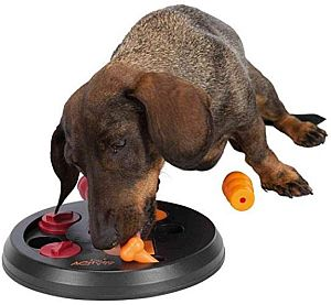 Trixie Dog Activity Flip Board Strategiespiel für Dackel
